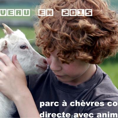ouverture du parc à chèvres au centre de la cueillette de la ferme de authieux