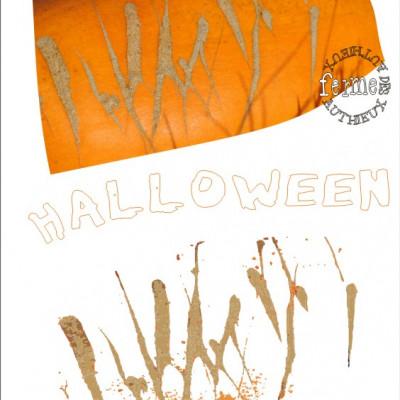 Les courges d'Halloween à la ferme cueillette des authieux