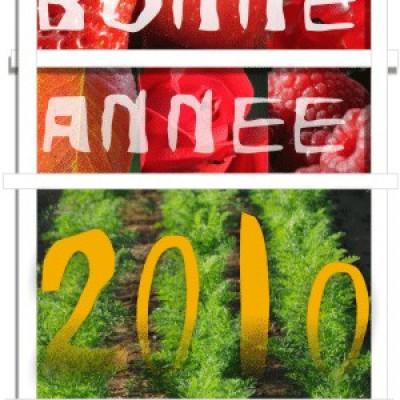 VIVE 2010 ! en pleine forme avec les fruits et légumes de la ferme cueillette des authieux