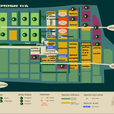 Plan de la cueillette de la ferme des authieux