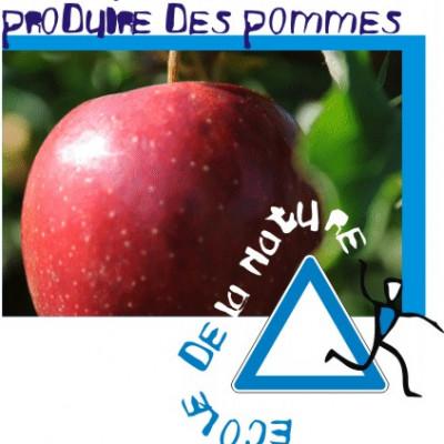 la production de pommes de A à Z pour les écoliers.
