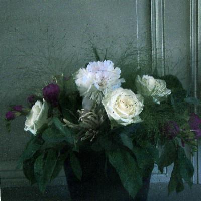 Protégé: création de bouquets à la ferme cueillette des authieux
